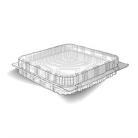 Hinged Lid PET Container 200 X 200 X 100 ( 320 PER CASE )