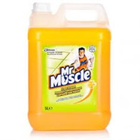 Mr Muscle Floor Cleaner Concentrated 5 Litre